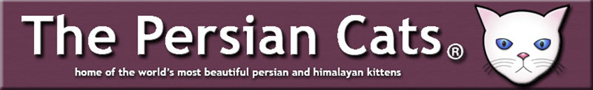 Persian Cat Breeders